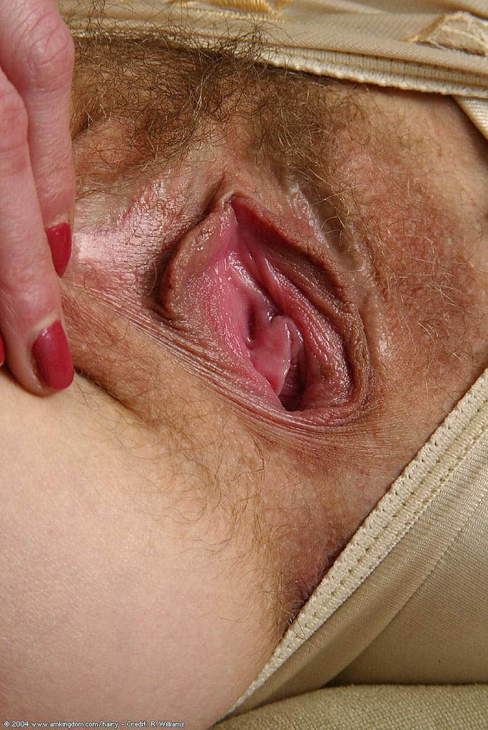 brown ass porn